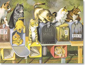 Note Card Set - First Class Cats by Bryan Moon | Bryan Moon | 35220 | Leanin' Tree