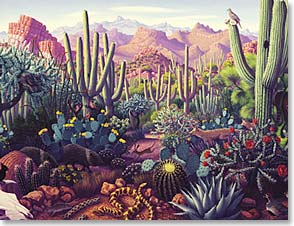 Blank Note Card Set<BR/>8 of 1 design - Cactus Landscape | Stephen Morath | 35267 | Leanin' Tree