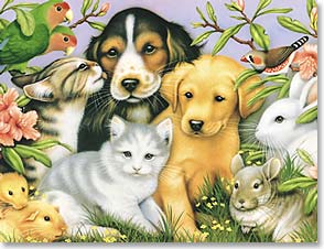 Blank Note Card Set<BR/>8 of 1 design - Cute & Sweet Critters by Howard Robinson | Howard Robinson | 35277 | Leanin' Tree