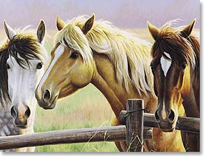 Blank Note Card Set<BR/>8 of 1 design - Horse Trio by Cynthie Fisher | Cynthie Fisher | 35308 | Leanin' Tree