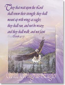 Note Card Set - With Wings As Eagles Isaiah 40:31 | Larry K. Martin | 35350 | Leanin' Tree