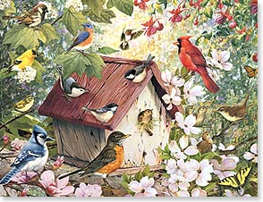 Blank Note Card Set<BR/>8 of 1 design - Bird House Gathering | Greg Giordano | 35887 | Leanin' Tree