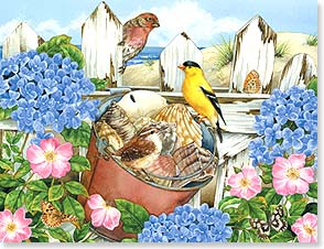 Blank Note Card Set<BR/>8 of 1 design - Birds and Shells at the Seaside | Jane Maday | 35955 | Leanin' Tree