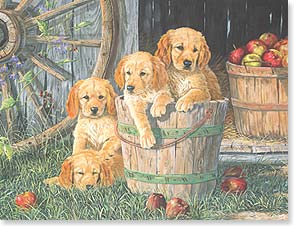 Blank Note Card Set<BR/>8 of 1 design - Labrador Puppies in a Pail | Northern Promotions | 35984 | Leanin' Tree