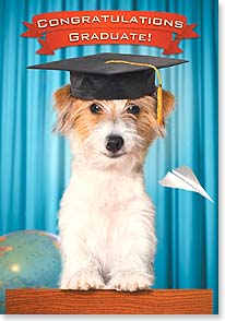 Graduation Card - Now go fetch yourself a job! | Michael Quackenbush | 38574 | Leanin' Tree