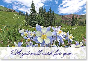Get Well Card - ...that you're feeling bright and sunny again soon. | John Fielder | 38691 | Leanin' Tree