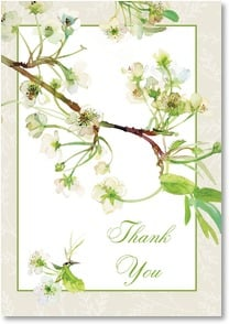 Thank You & Appreciation Card - Kindness Much Appreciated | Gail Flores | 3_2001660-P | Leanin' Tree
