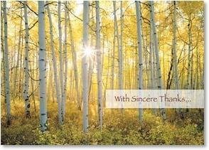 Thank You & Appreciation Card - You are a ray of sunshine! | John Fielder | 3_2002085-P | Leanin' Tree