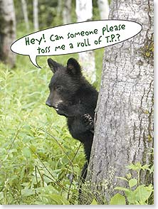 Birthday Card - Am I wishing you the best birthday?  Does a bear...? | Lisa and Mike Husar | 43857 | Leanin' Tree