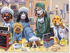 Get Well Card - Doggone It, Get Well Soon | Bryan Moon | 44322 | Leanin' Tree