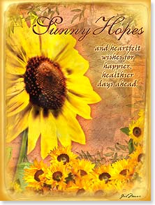 Feel Better Card - Sunny Hopes and Heartfelt Wishes | Gail Marie® | 44384 | Leanin' Tree