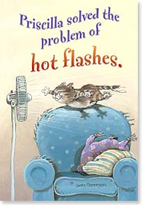 Flexible Magnet - Sale - Hot Flash Solution | Gary Patterson | 57578 | Leanin' Tree