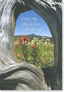 Praying For You Card - Day by Day | Ron Dahlquist | 59796 | Leanin' Tree