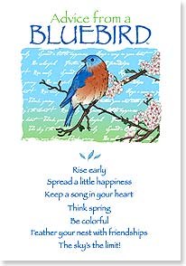 Birthday Card - Birthday Advice From A Bluebird - 60271 | Leanin' Tree