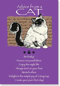Birthday Card - Staff Pick - Birthday Advice From A CAT | Your True Nature® | 60281 | Leanin' Tree