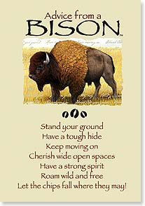 Motivation & Inspiration Card - Advice from a Bison | Your True Nature® | 60294 | Leanin' Tree