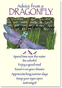 Birthday Card - Birthday Advice from a Dragonfly | Your True Nature® | 60391 | Leanin' Tree