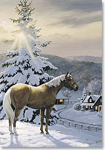 Christmas Card - Christmas in the Sun | Persis Clayton Weirs | 70270 | Leanin' Tree