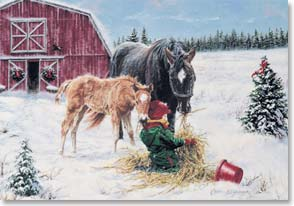 Christmas Card - Wishing you a season of caring, sharing! | Carla D'aguanno | 71167 | Leanin' Tree