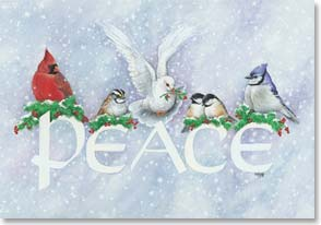 Christmas Card - May Peace be your Gift at Christmas | Kathy Goff | 71373 | Leanin' Tree
