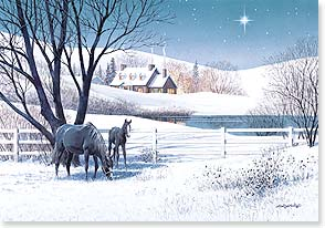 Christmas Card - May the Christmas star shine down on you | D. R. Laird | 73071 | Leanin' Tree