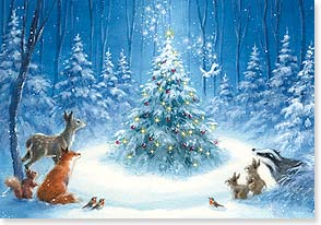 Christmas Card - The Wonder of the Season - 73104 | Leanin' Tree