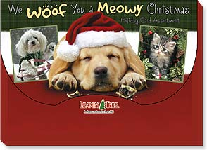 Boxed Christmas Assortment<BR/>2 ea. of 10 designs - We Woof You a Meowy Christmas - 90271 | Leanin' Tree