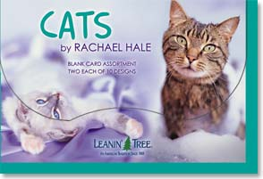 Boxed Blank Cards - Blank Card Assortment | Cats by Rachel Hale - 90647 | Leanin' Tree