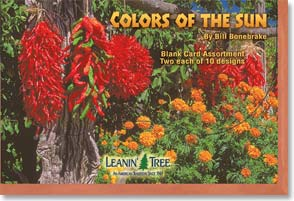 Boxed Blank Cards - Colors of the Sun - 90654 | Leanin' Tree