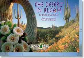 Boxed Blank Cards<BR/>2 each of 10 designs - The Desert in Bloom by Jack Dykinga - 90656 | Leanin' Tree