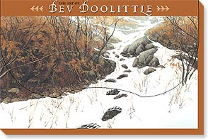 Boxed Blank Cards<BR/>2 each of 10 designs - Hidden Images by Bev Doolittle - 90686 | Leanin' Tree