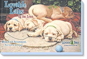 Boxed Blank Cards - Lovable Labs by Jim Lamb - 90691 | Leanin' Tree