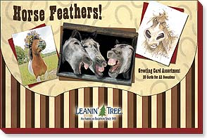 Boxed Greeting Cards - Sale - Greeted Assortment | Horse Feathers - 90728 | Leanin' Tree