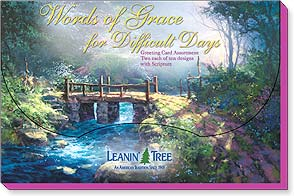 Boxed Greeted Cards<BR/>2 each of 10 designs - Words of Grace for Difficult Days - 90751 | Leanin' Tree