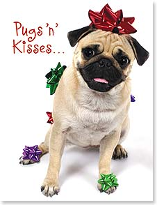 Christmas Note Card Sets - Pugs 'n' Kisses and Happy Holiday Wishes | Kim Crisler | 92097 | Leanin' Tree