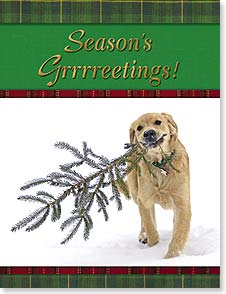 Christmas Note Card Sets - Season's Grrrrreetings! | Lisa and Mike Husar | 92103 | Leanin' Tree