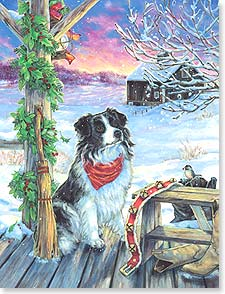 Christmas Note Card Sets - Warm and Friendly Wishes for Christmas | Donna Race | 92148 | Leanin' Tree