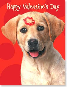 Valentine's Day Note Card Set - You put the wag in my tail! - 92152 | Leanin' Tree