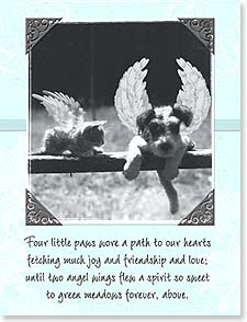 Sympathy Card for Pet - Four Little Paws | Maggie Mae Sharp | 92183 | Leanin' Tree