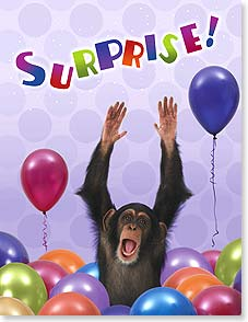 Birthday Card - Surprise! | Wild-Side Brands Ltd | 95316 | Leanin' Tree
