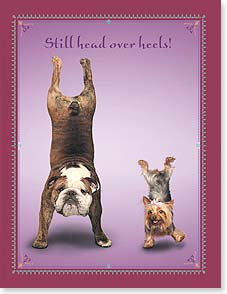 Anniversary Card - Still head over heels! Happy Anniversary | Yoga Dogs®/Yoga Cats | 95386 | Leanin' Tree