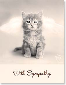 Sympathy Card for Pet - God made sure those Pearly Gates contained a kitty door. | Rachael Hale® | 97285 | Leanin' Tree