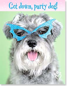 Birthday Card - Party Dog | rachaelhale® Dissero Brands | 97318 | Leanin' Tree